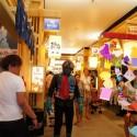 Darth Vader and Kamen Rider visiting Toy Garden Pavilion