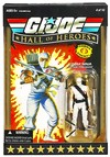 GIJoe-Hall-of-Heroes-Cobra-Ninja-Storm-Shadow-front